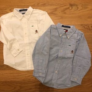 Set of Button down Shirts- Tommy Hilfiger